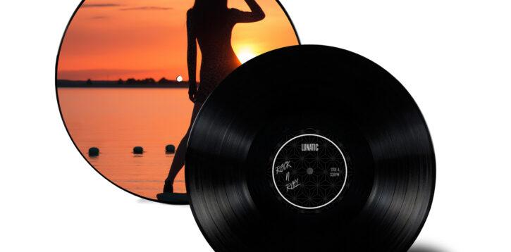 vin004 01 hybrid vinyl